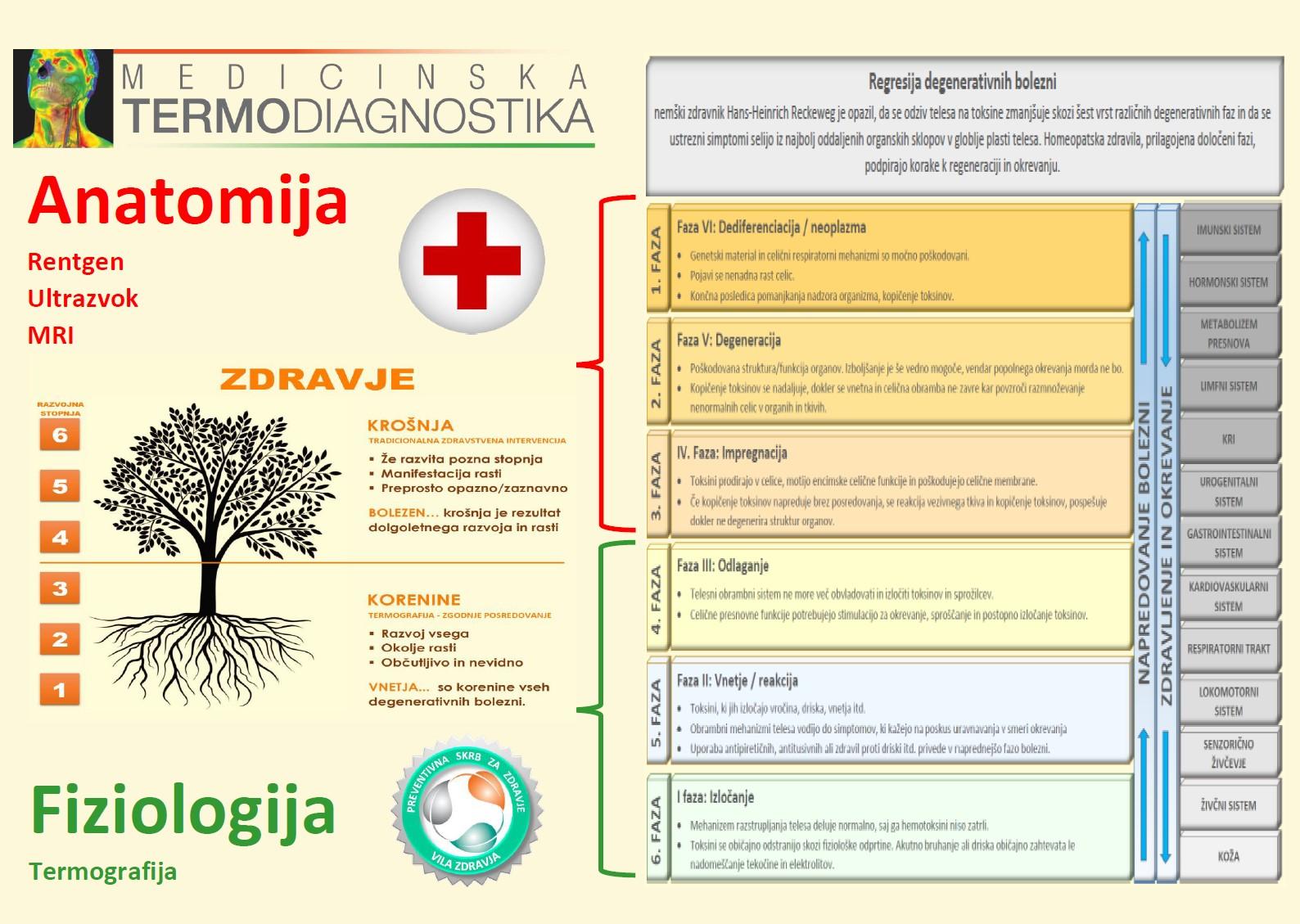 Regresija degenerativnih bolezni - Anatomija - Fiziologija